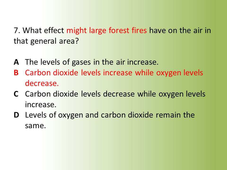 7. What effect might large forest fires have on the air in that general area.