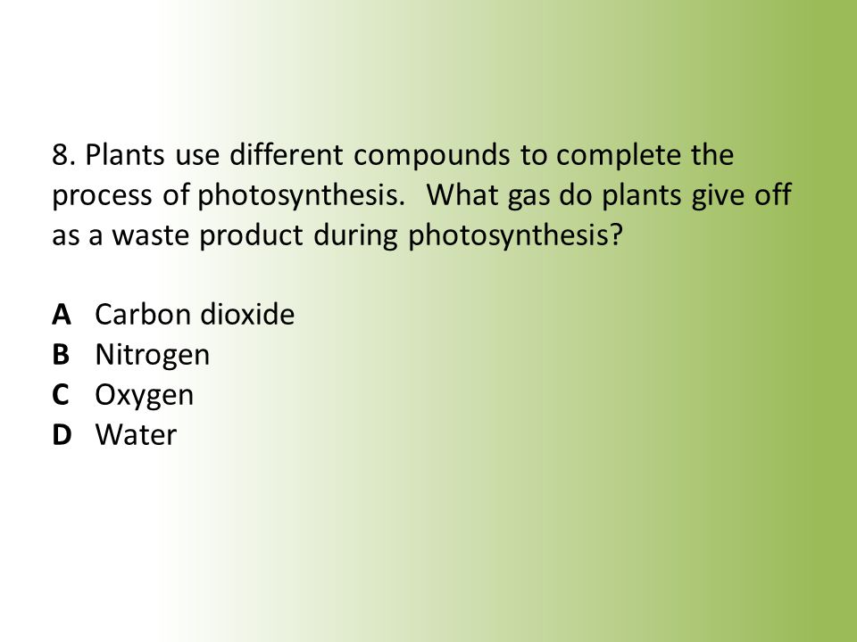 8. Plants use different compounds to complete the process of photosynthesis.