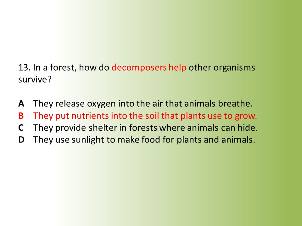13. In a forest, how do decomposers help other organisms survive. A