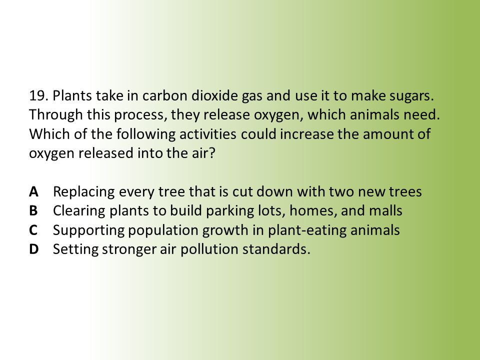 19. Plants take in carbon dioxide gas and use it to make sugars