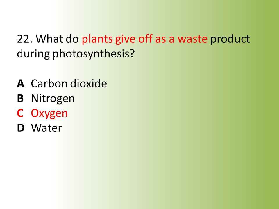 22. What do plants give off as a waste product during photosynthesis.