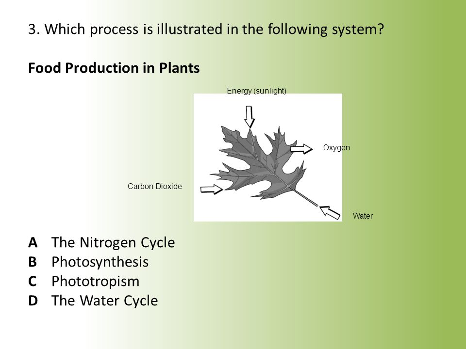 3. Which process is illustrated in the following system