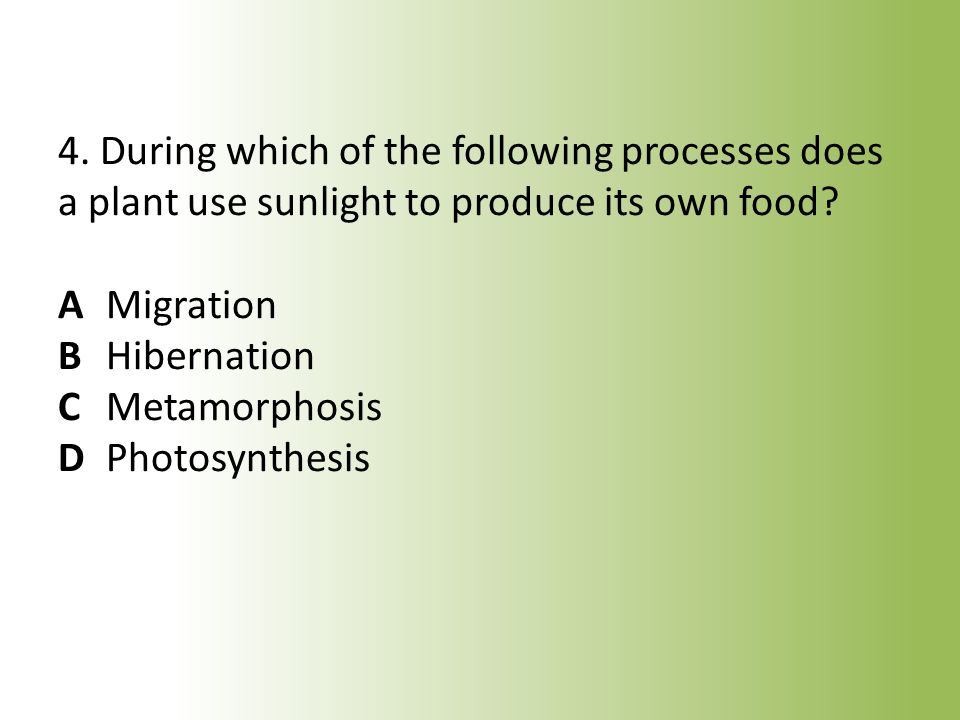 4. During which of the following processes does a plant use sunlight to produce its own food.