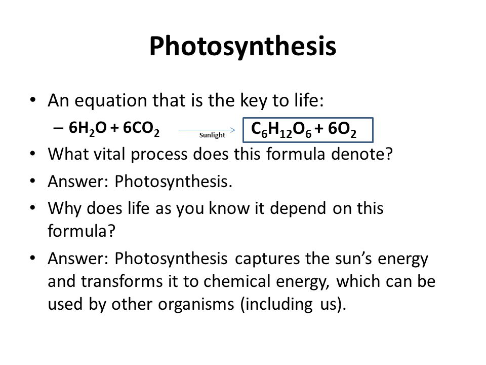 Photosynthesis An equation that is the key to life: