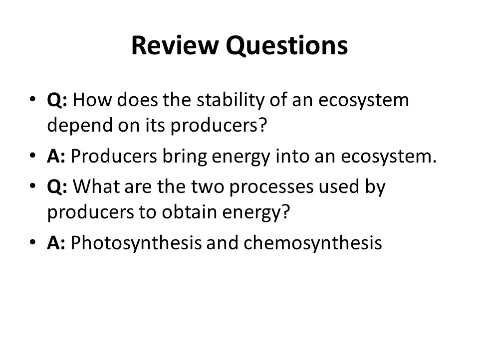 Review Questions Q: How does the stability of an ecosystem depend on its producers A: Producers bring energy into an ecosystem.