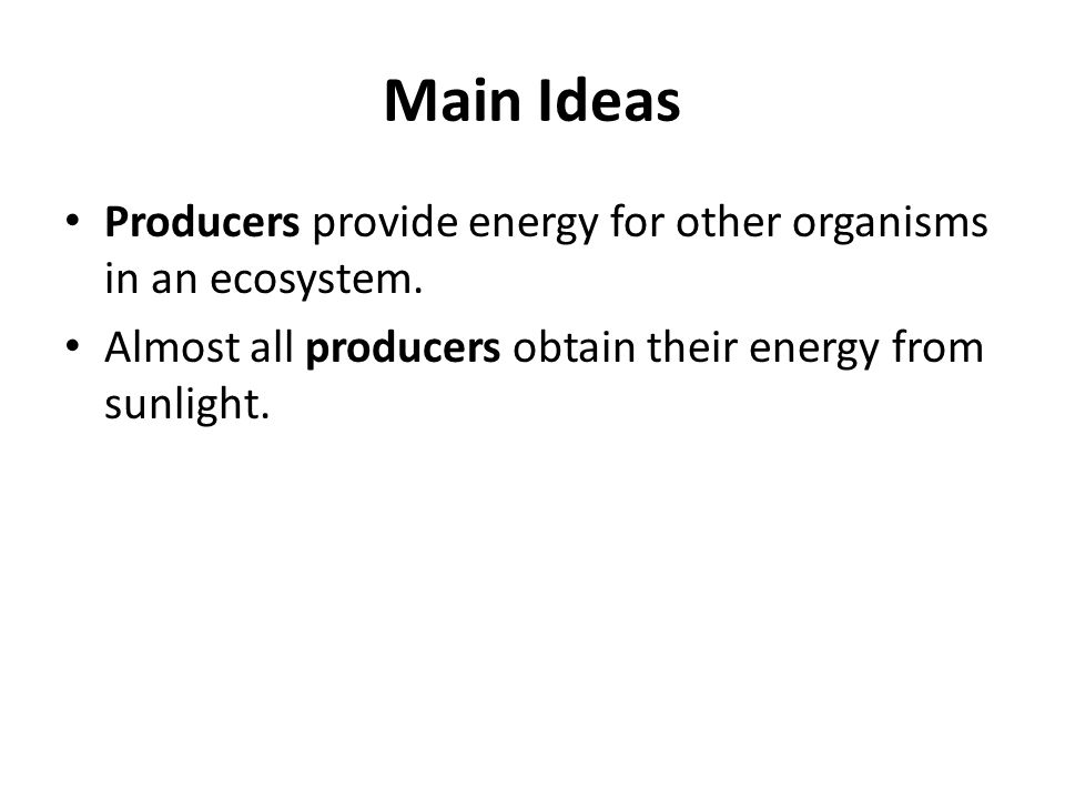 Main Ideas Producers provide energy for other organisms in an ecosystem.