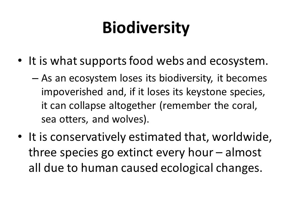Biodiversity It is what supports food webs and ecosystem.