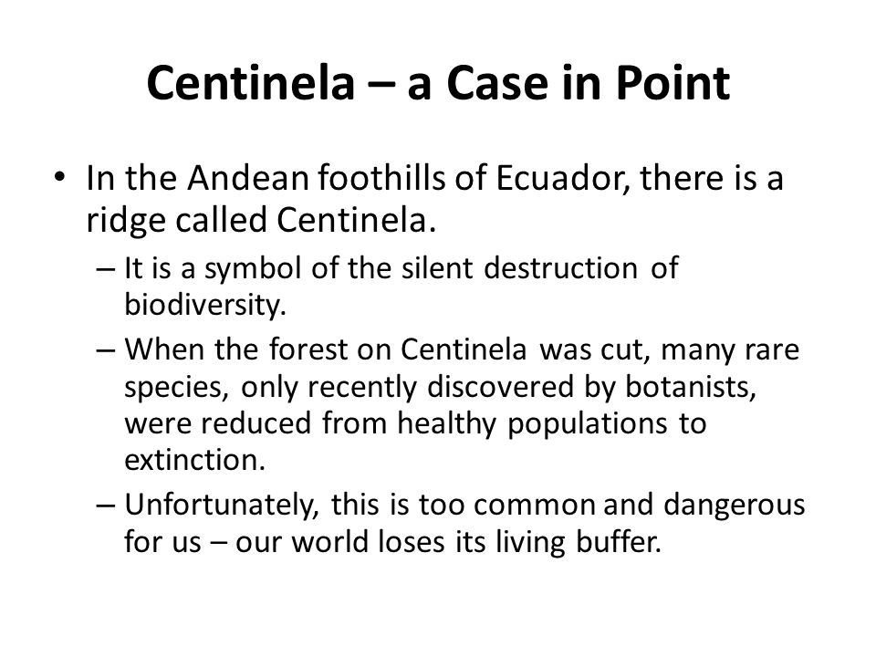 Centinela – a Case in Point