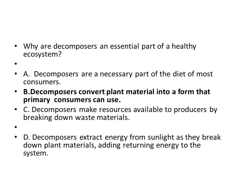 Why are decomposers an essential part of a healthy ecosystem