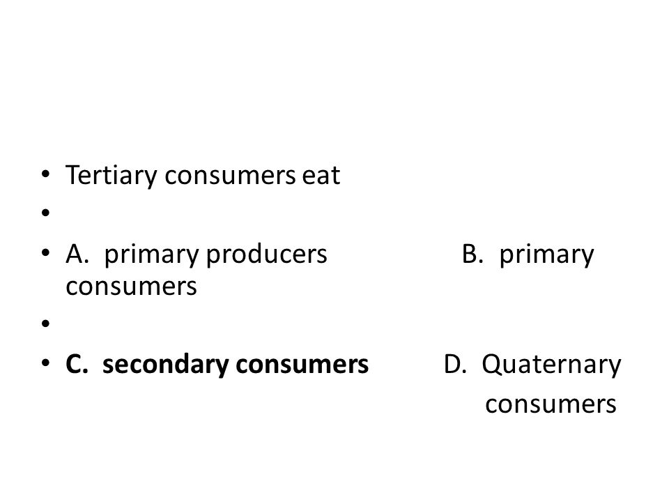 Tertiary consumers eat. A. primary producers B. primary consumers. C. secondary consumers D. Quaternary.