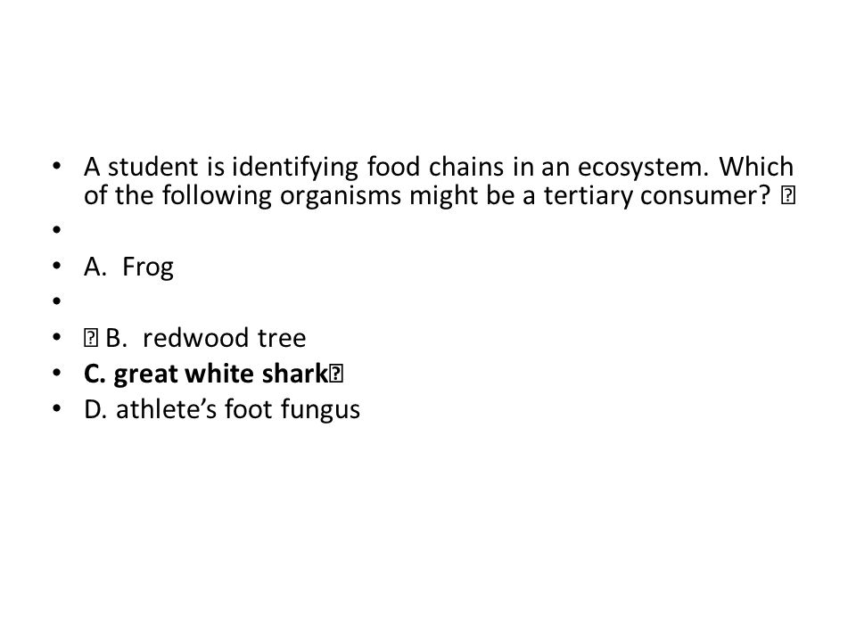 A student is identifying food chains in an ecosystem