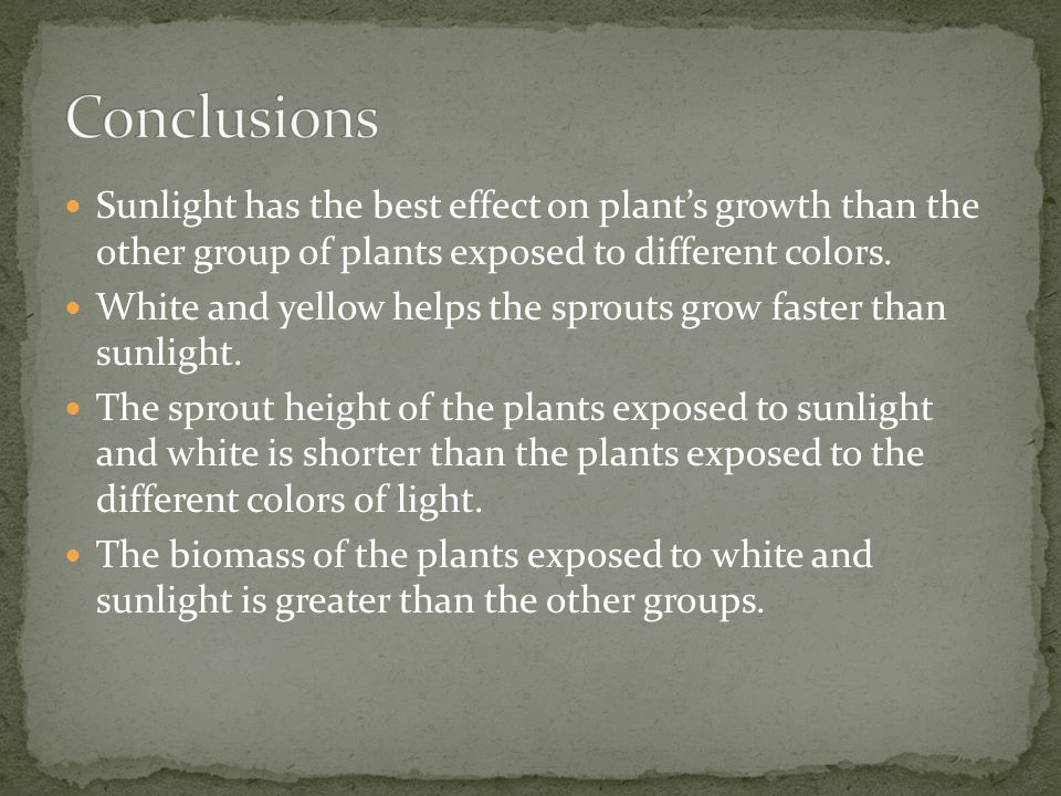 Conclusions Sunlight has the best effect on plant's growth than the other group of plants exposed to different colors.