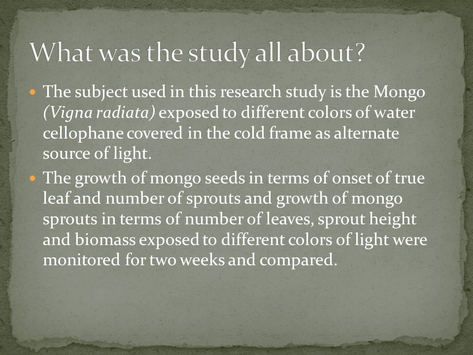 What was the study all about