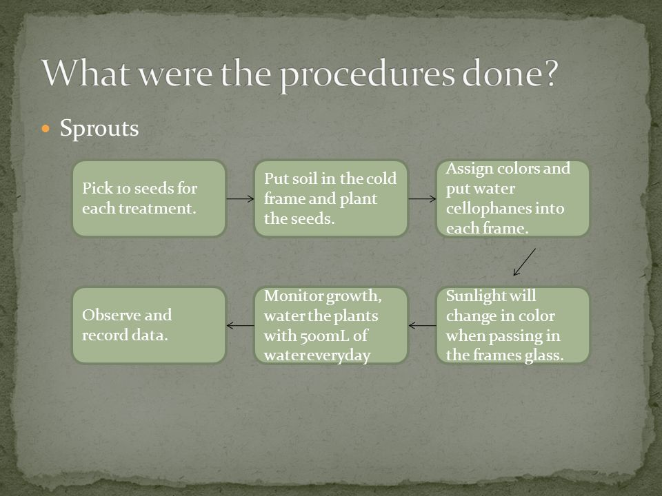 What were the procedures done
