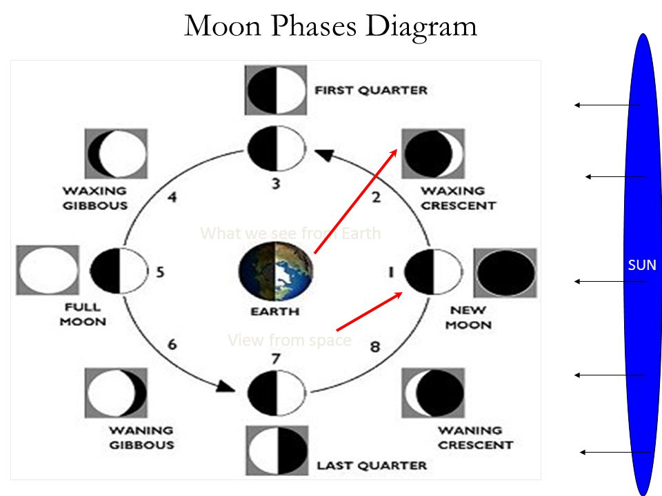 Moon Phases Diagram SUN What we see from Earth View from space