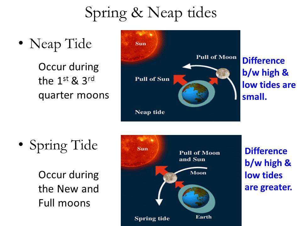 Spring & Neap tides Neap Tide Spring Tide