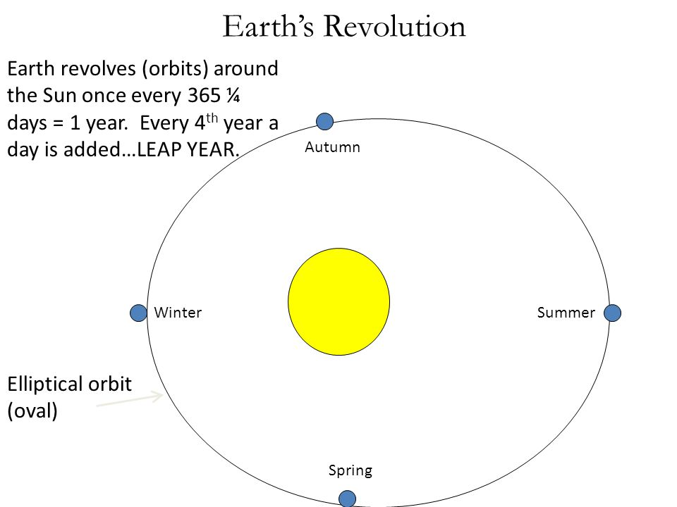 Earth's Revolution Earth revolves (orbits) around the Sun once every 365 ¼ days = 1 year. Every 4th year a day is added…LEAP YEAR.