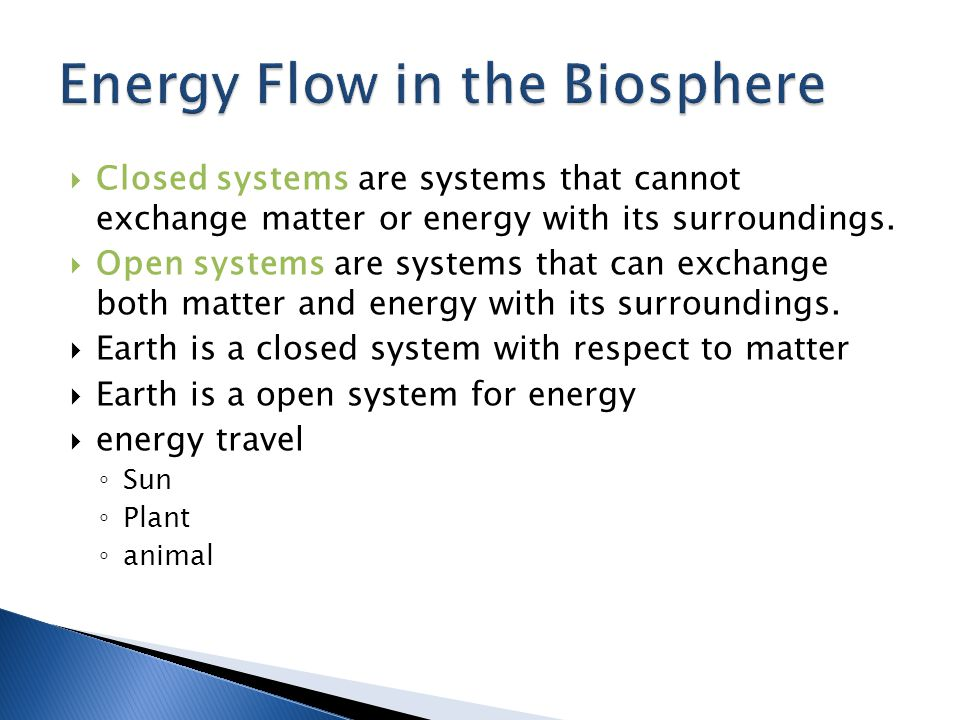Energy Flow in the Biosphere
