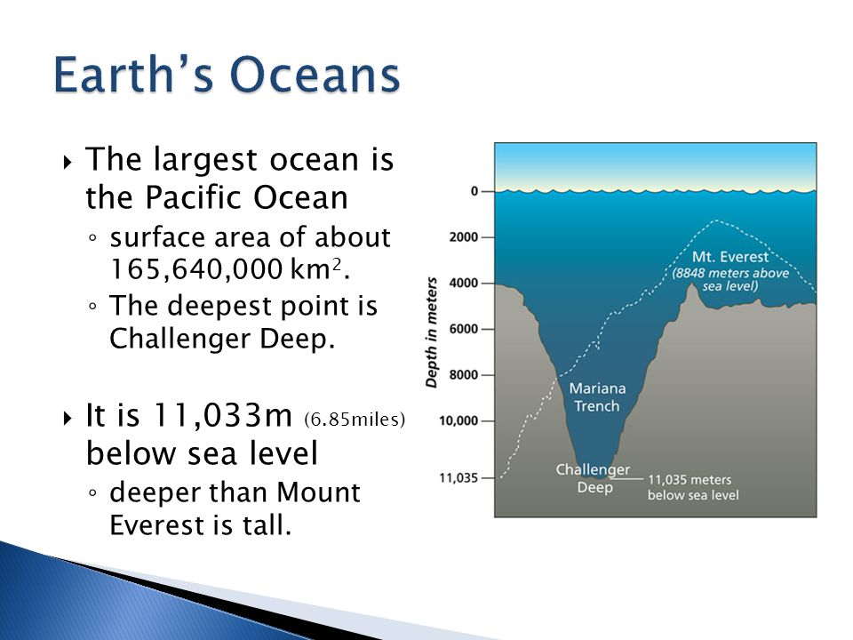 Earth's Oceans The largest ocean is the Pacific Ocean