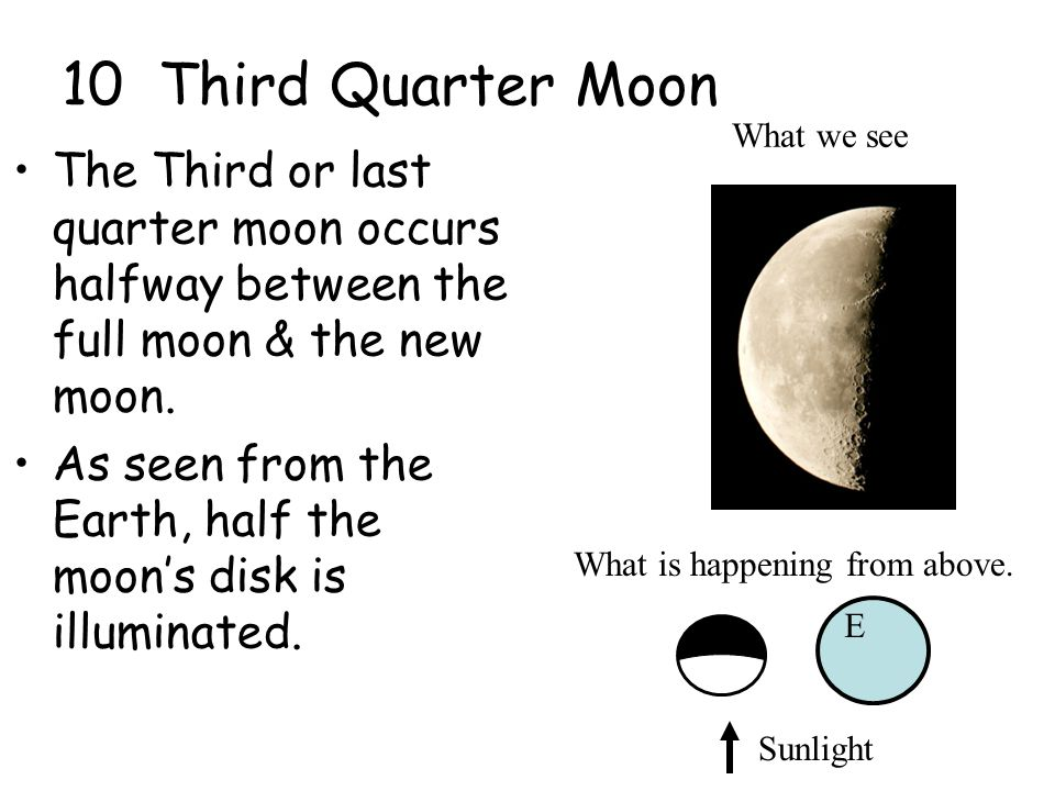 10 Third Quarter Moon What we see. The Third or last quarter moon occurs halfway between the full moon & the new moon.