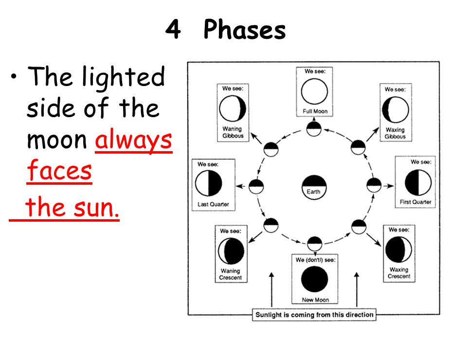 4 Phases The lighted side of the moon always faces the sun.