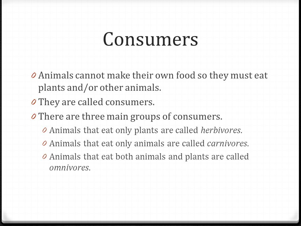 Consumers Animals cannot make their own food so they must eat plants and/or other animals. They are called consumers.