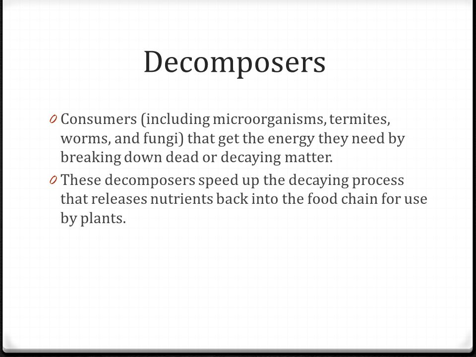 Decomposers Consumers (including microorganisms, termites, worms, and fungi) that get the energy they need by breaking down dead or decaying matter.