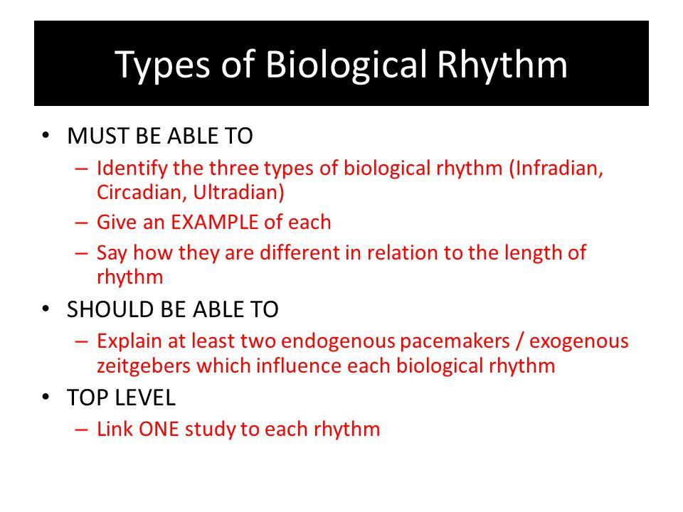 Types of Biological Rhythm