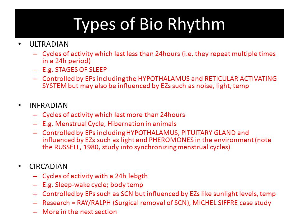 Types of Bio Rhythm ULTRADIAN INFRADIAN CIRCADIAN