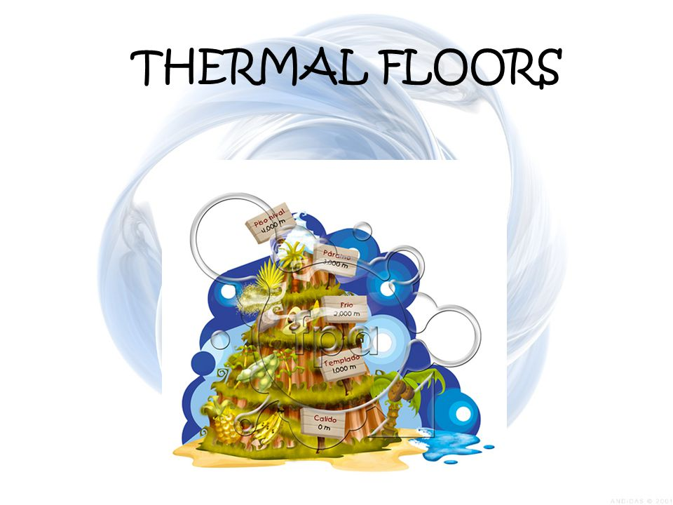 THERMAL FLOORS