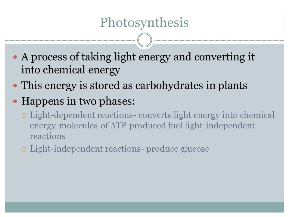 Photosynthesis A process of taking light energy and converting it into chemical energy. This energy is stored as carbohydrates in plants.