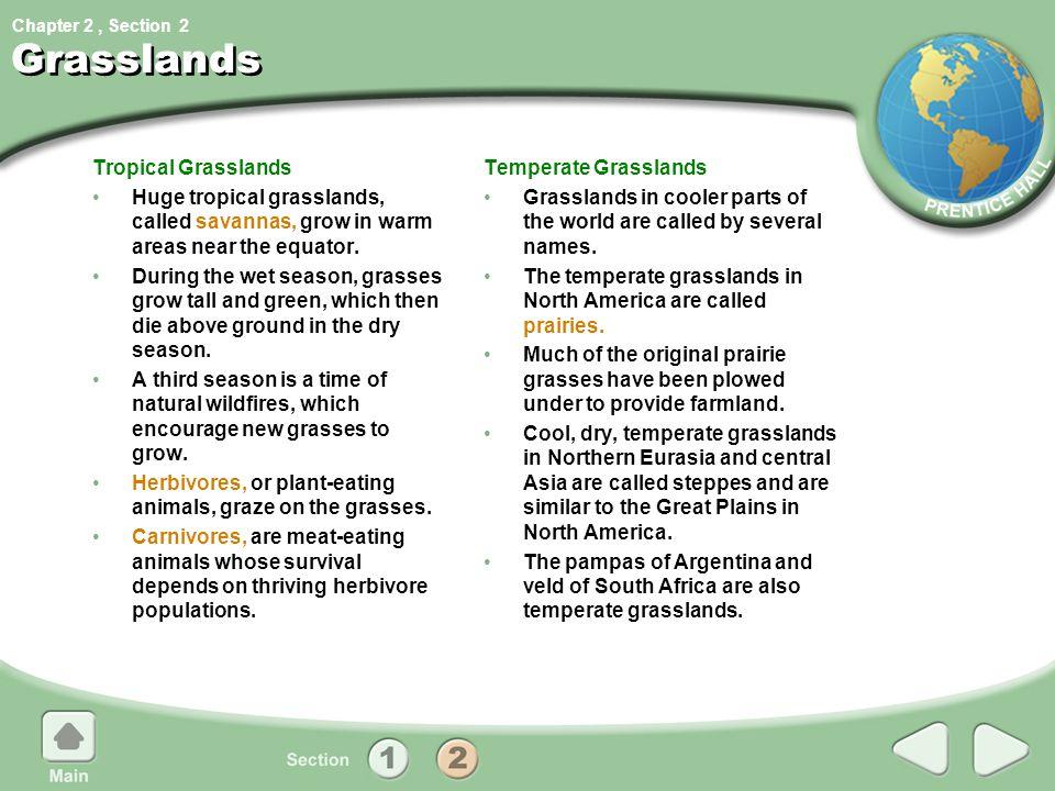 Grasslands Tropical Grasslands