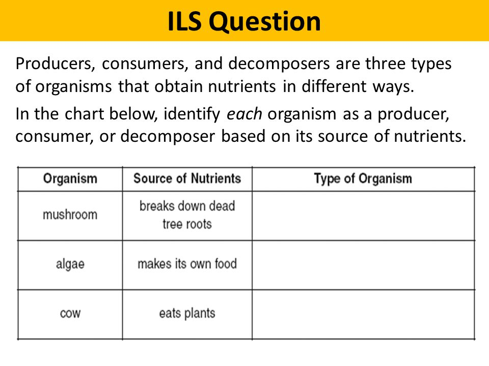 ILS Question Producers, consumers, and decomposers are three types of organisms that obtain nutrients in different ways.