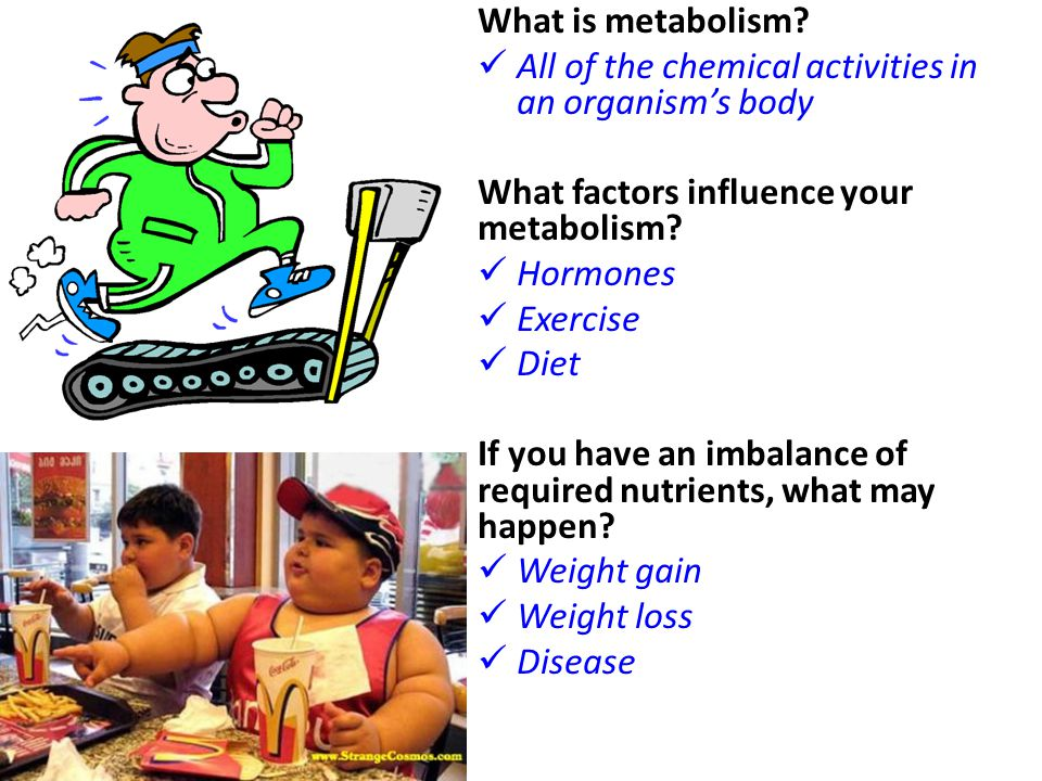 What is metabolism All of the chemical activities in an organism's body. What factors influence your metabolism