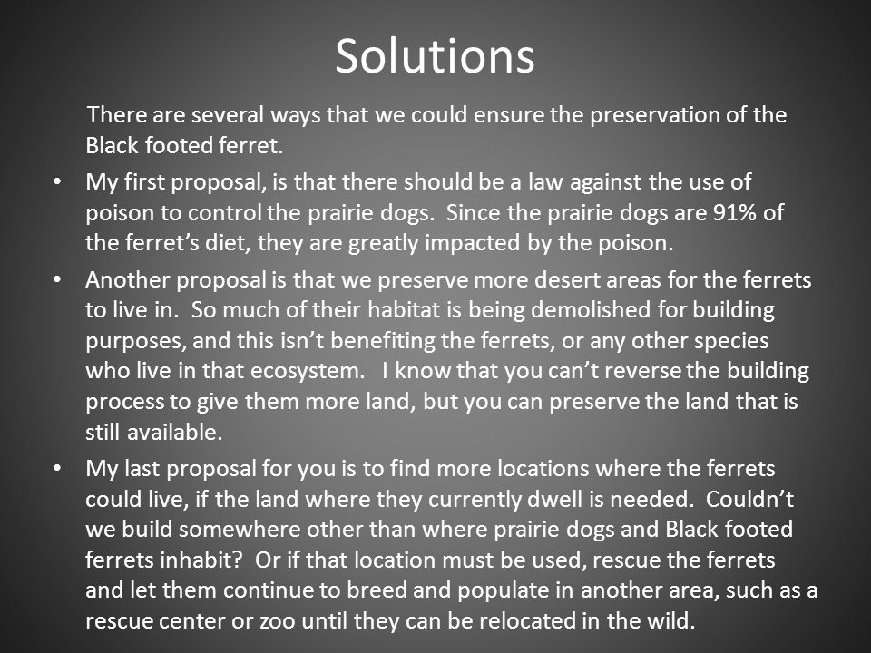 Solutions There are several ways that we could ensure the preservation of the Black footed ferret.