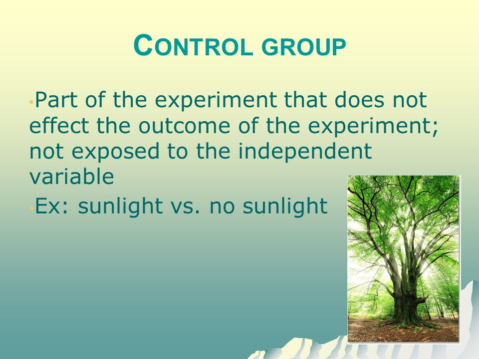 Control group Part of the experiment that does not effect the outcome of the experiment; not exposed to the independent variable.