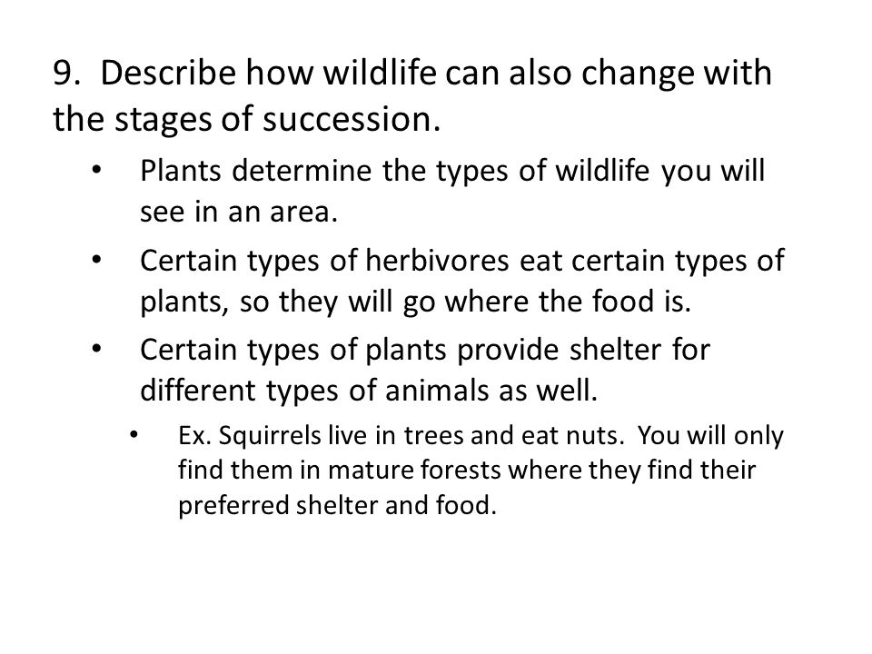 9. Describe how wildlife can also change with the stages of succession.