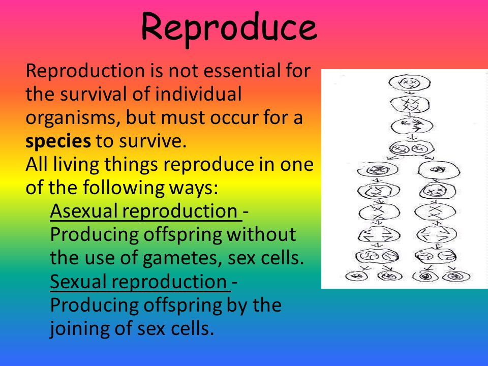 Reproduce Reproduction is not essential for the survival of individual organisms, but must occur for a species to survive.
