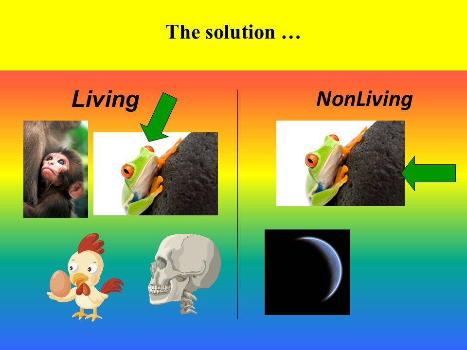 The solution … Living NonLiving