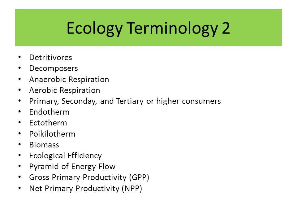 Ecology Terminology 2 Detritivores Decomposers Anaerobic Respiration