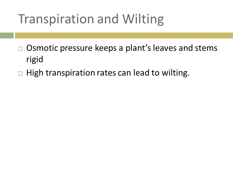 Transpiration and Wilting