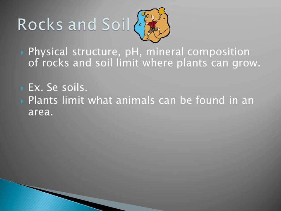 Rocks and Soil Physical structure, pH, mineral composition of rocks and soil limit where plants can grow.