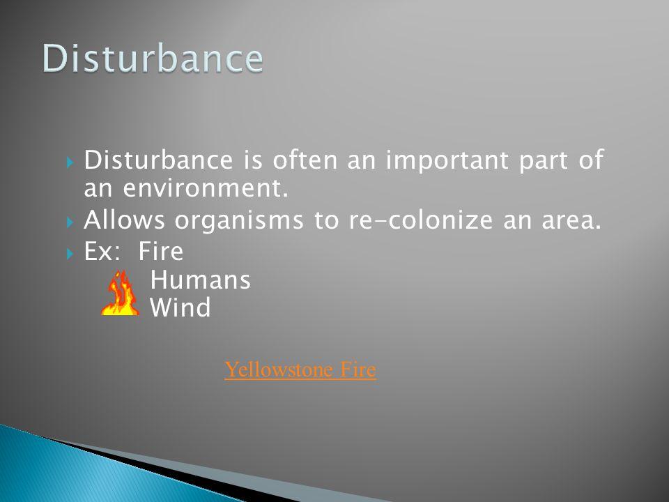 Disturbance Disturbance is often an important part of an environment.