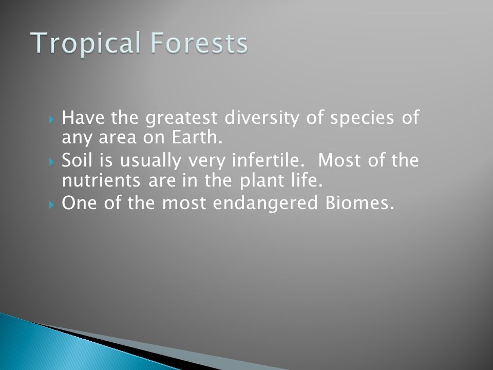 Tropical Forests Have the greatest diversity of species of any area on Earth.