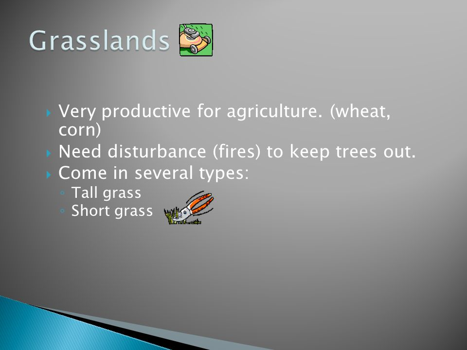 Grasslands Very productive for agriculture. (wheat, corn)