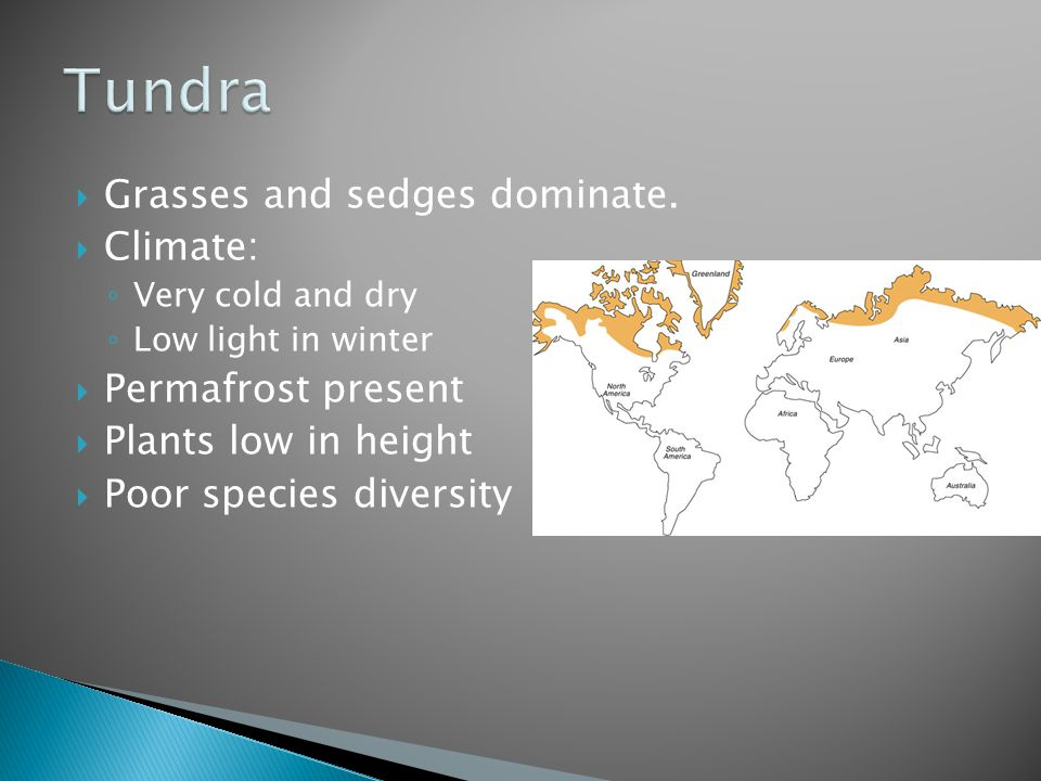 Tundra Grasses and sedges dominate. Climate: Permafrost present