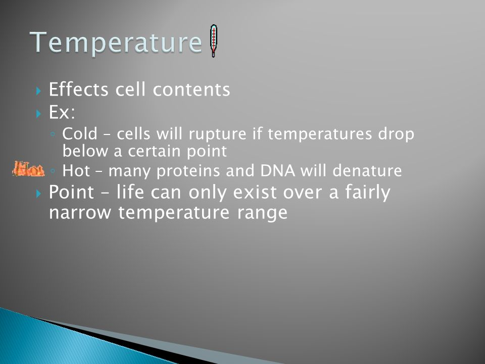 Temperature Effects cell contents Ex:
