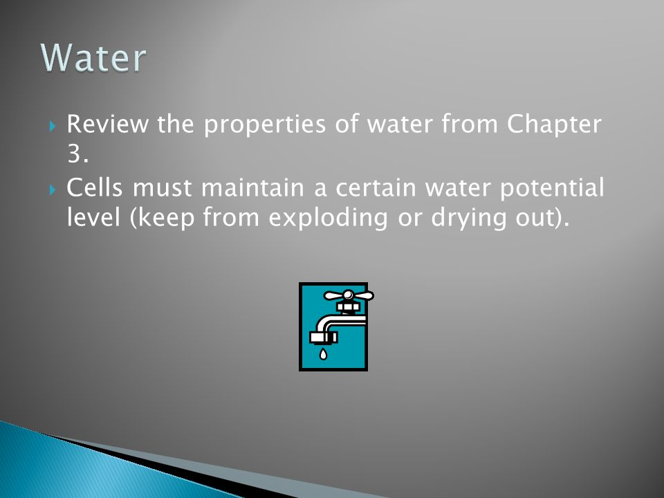 Water Review the properties of water from Chapter 3.