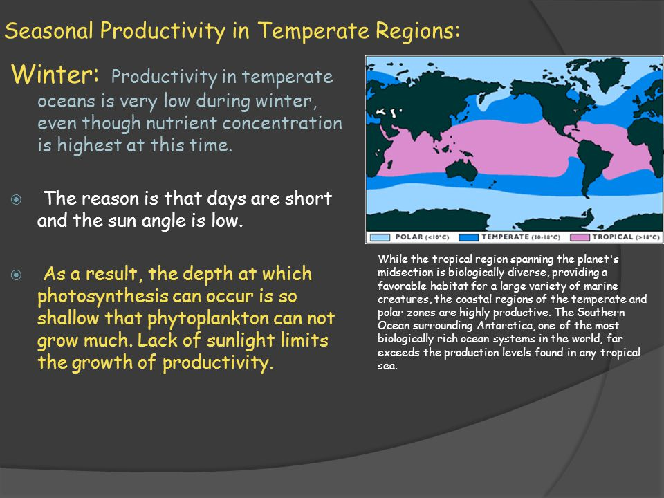 Seasonal Productivity in Temperate Regions: