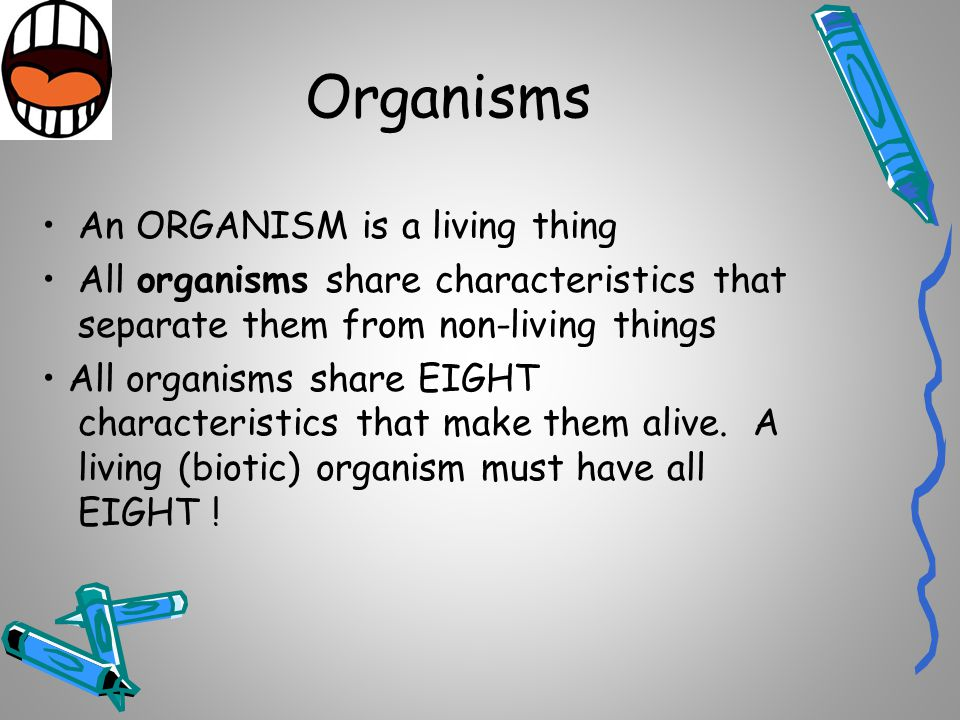 Organisms An ORGANISM is a living thing